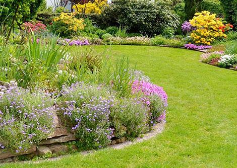 Garden Peticca